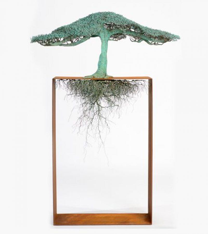 Shoalhaven Contemporary Art Prize